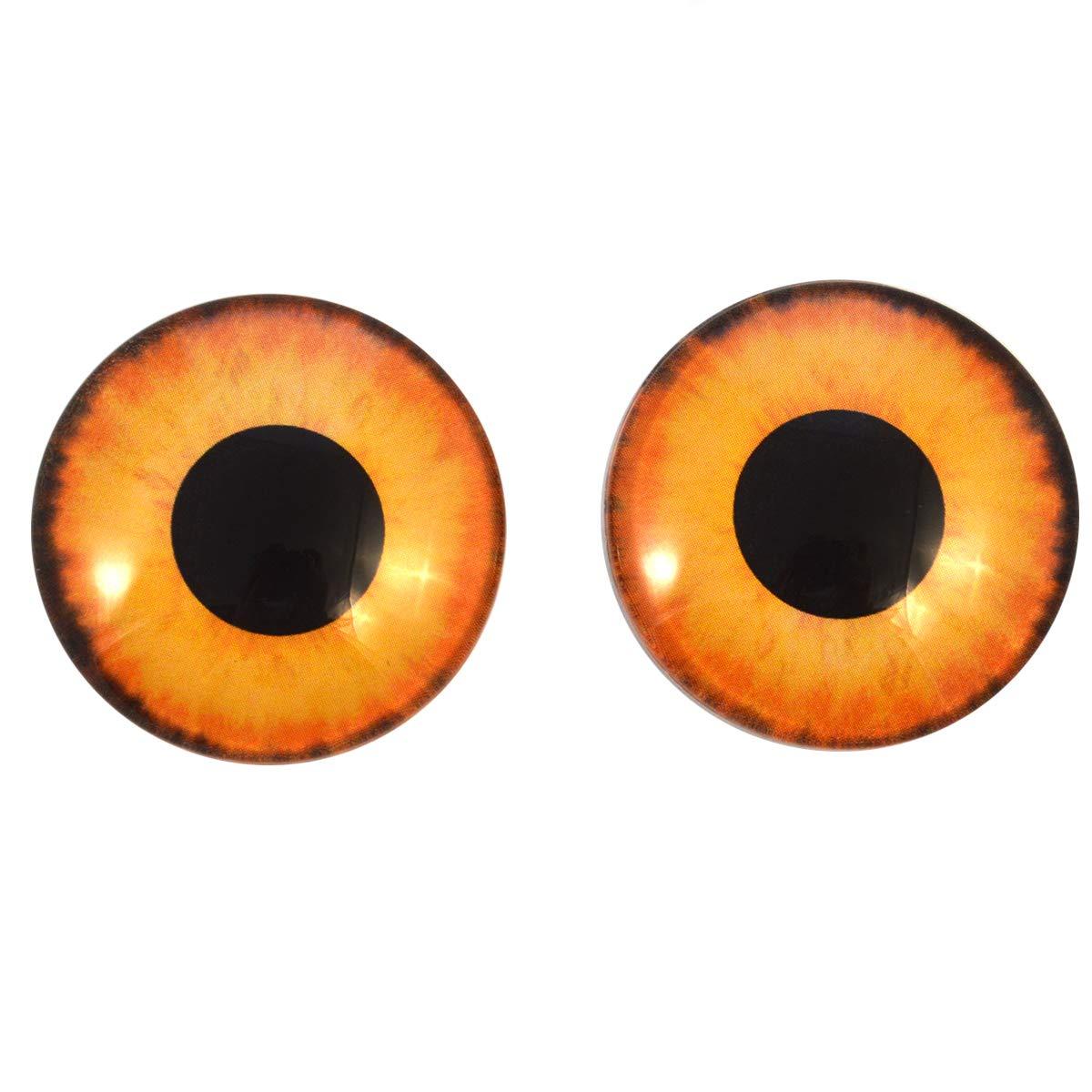 Yellow and Orange Animal Eyeballs 40mm Wild Creature Glass Eyes Cabochon Set