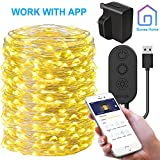 Starry String Light with APP Control, Govee 20m/66ft Fairy Copper Wire Light 200 LEDs 8 Modes Timer Switch, Waterproof Fairy Light (Warm White) for Christmas Holiday Party