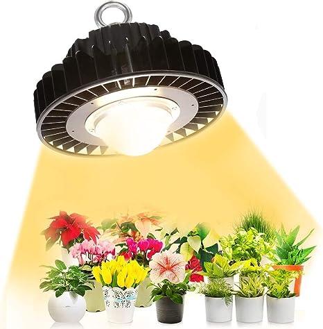 COB LED Grow Light Bulb 300W CF GROW High PAR//PPFD 3500K White Full Spectrum LED Plant Grow Lamp for Indoor Plants Seedlings Veg Flowering Fruit All Stage Growing