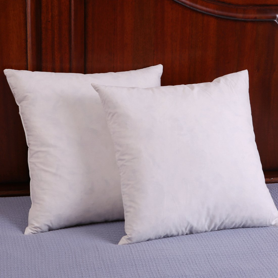 Set of 2, Down and Feather Throw Pillow Insert, Decorative Throw Pillows 601982663223 | eBay