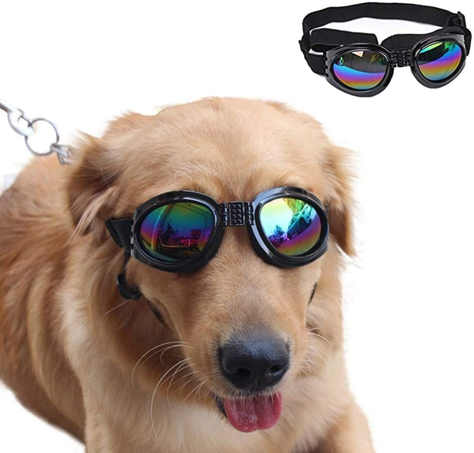 Top 10 Best Dogs Sunglasses Reviews in 2020 5
