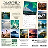 Call of the Wild 2019 Wall Calendar Featuring the