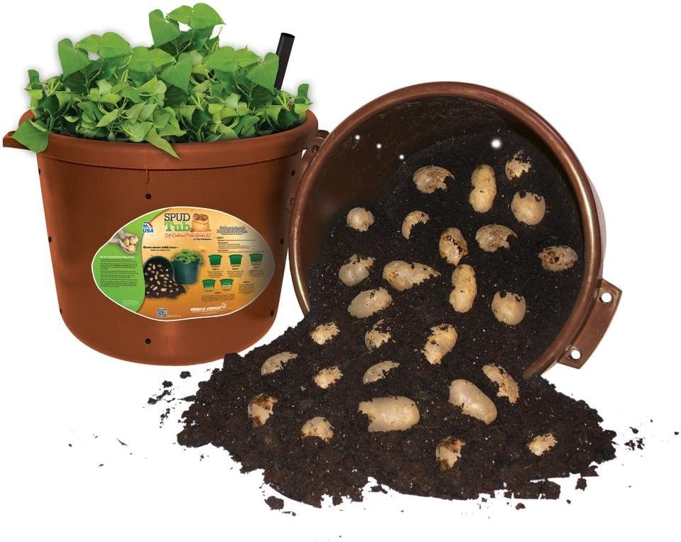 CompleteSecond Cropping Potato kit with 30L pots and fert