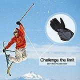Ski Gloves, iFeng Waterproof Winter Snow Gloves Windproof Ski Snowboard Warm Gloves for Men