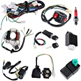 Complete Electrics Stator Coil CDI Wiring Harness Solenoid Relay Spark Plug for 4 Stroke ATV 50cc 70cc 110cc 125cc Pit Quad D