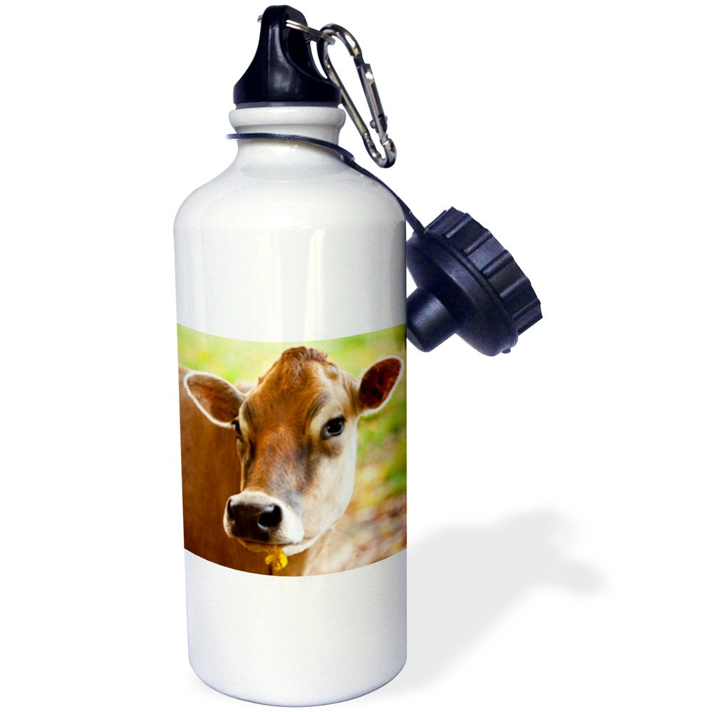 Vermont 3dRose wb/_147634/_1Happy Jersey cow 21 oz White USA-US46 BJN0043-Brian Jannsen Sports Water Bottle USA-US46 BJN0043-Brian Jannsen Sports Water Bottle South Woodstock