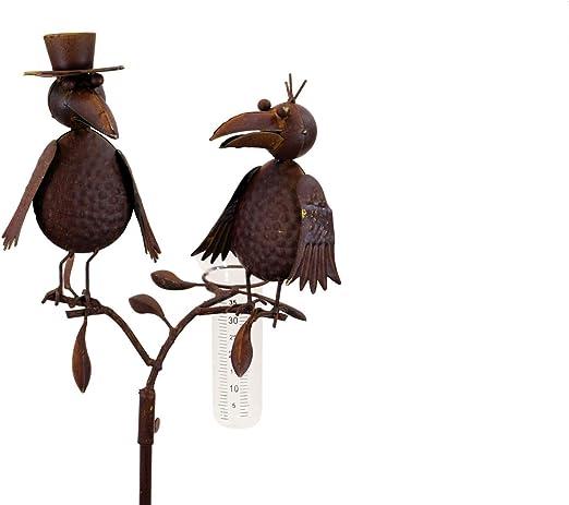 Amicaso - Pluviómetro de pareja de pájaros, estación meteorológica para jardín, metal y cristal: Amazon.es: Jardín