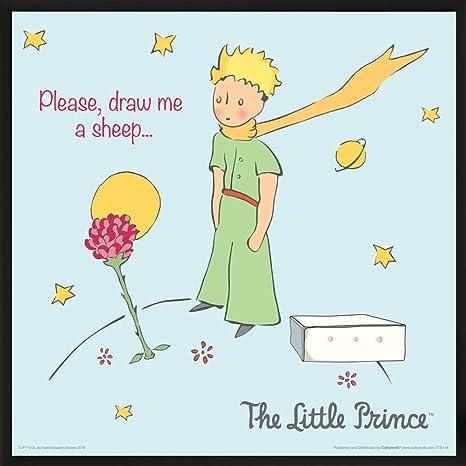 Amazon Com The Little Prince Please Draw Me A Sheep Antoine De