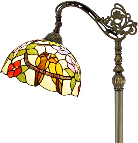 Tiffany Style Reading Floor Lamp W12H64 Inch 1E26 Stained Glass Taropical Birds Lampshade Antique Adjustable Lighting Arched Standing Base S803 Series Lamps WERFACTORY-Girlfriend Lover Bedroom Gift