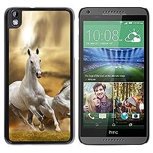 Stuss Case / Funda Carcasa protectora - Horse White Wild Free Running Field Desert - HTC DESIRE 816