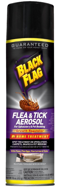 Black Flag 11094 11094-IPO Flying Insect Killer Spray 18 oz Grass Plants