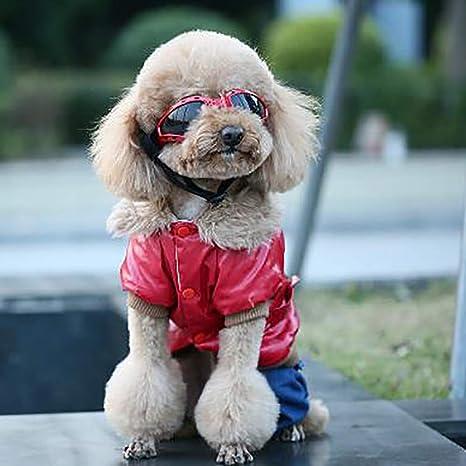 LHYL Gafas de Sol para Perros, Gafas Plegables para Mascotas ...