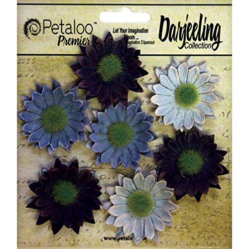 (Petaloo Darjeeling Daisy Mini Blue)