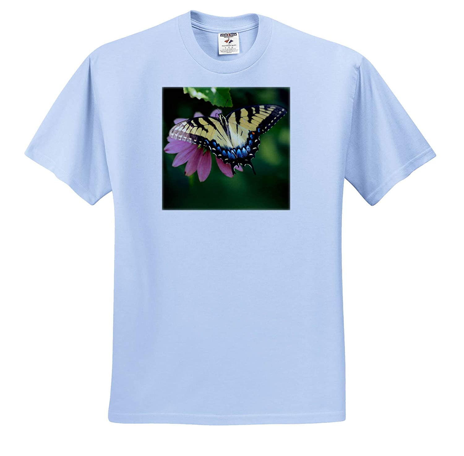 Insect 3dRose Stamp City - Adult T-Shirt XL ts/_320187 Top View Macro Photograph of an Eastern Tiger Swallowtail
