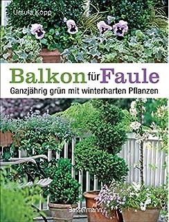 Balkon Ideen Pflanzen balkon ideen für ungeduldige schnelle lösungen die sicher gelingen