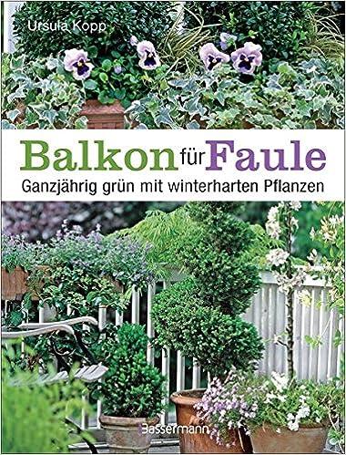 Balkon Fur Faule Ganzjahrig Grun Mit Winterharten Pflanzen