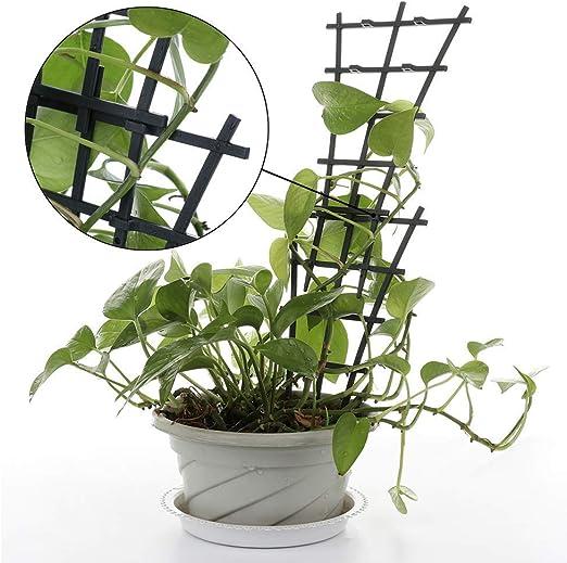 KJSMA 12 enrejados de jardín para Plantas trepadoras pequeñas, en ...
