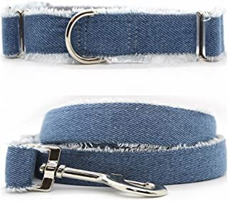 "product image for Diva-Dog 'Blue Jean Baby' 1"" Wide Chainless Martingale Dog Collar, Matching Leash Available"