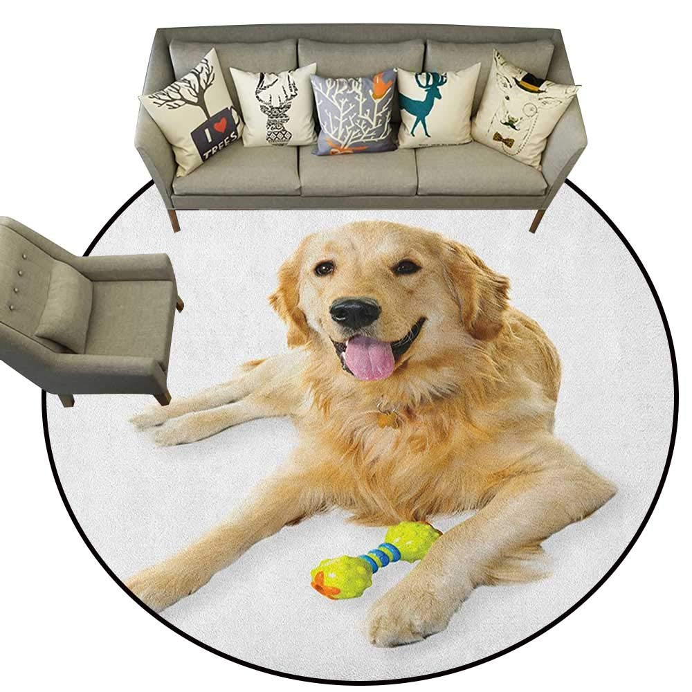 Golden Retriever,American Floor mats Pet Dog Laying Down with Toy Friendly Domestic Puppy Playful Companion D78 Home Bedroom Floor Mats