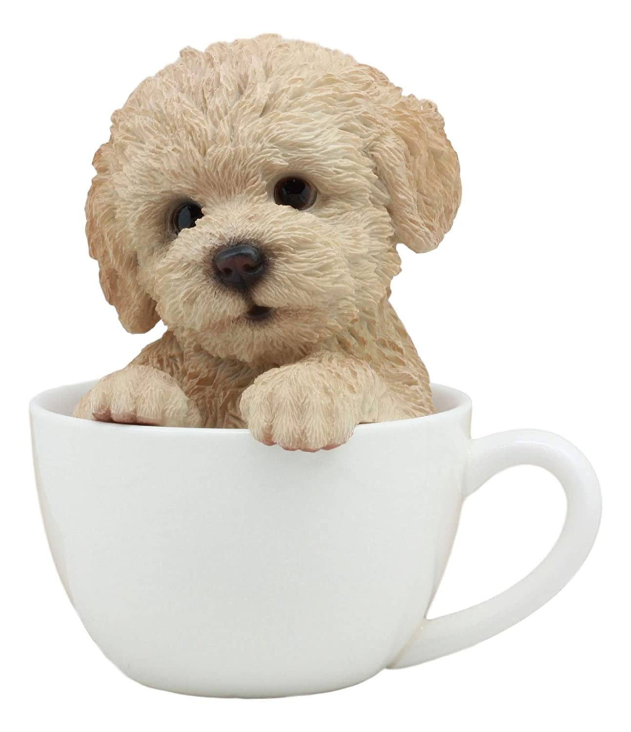"""Ebros Realistic Adorable Brown Poodle Dog Teacup Statue 6"""" Tall Pet Pal Dog Breed Collectible Resin Decor Figurine with Glass Eyes"""