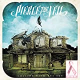 Collide With the Sky - Pierce the Veil