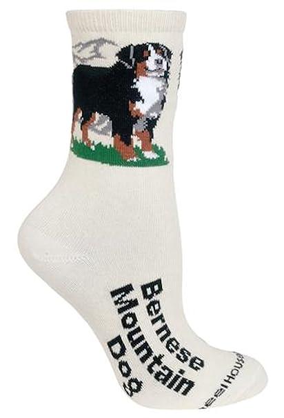 Diseño de perro de montaña bernés calcetines en color crema Beige crema: Amazon.es: Ropa y accesorios