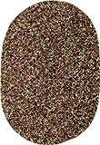 Sabrina Tweed Indoor/Outdoor Oval Braided Rug, 2 by
