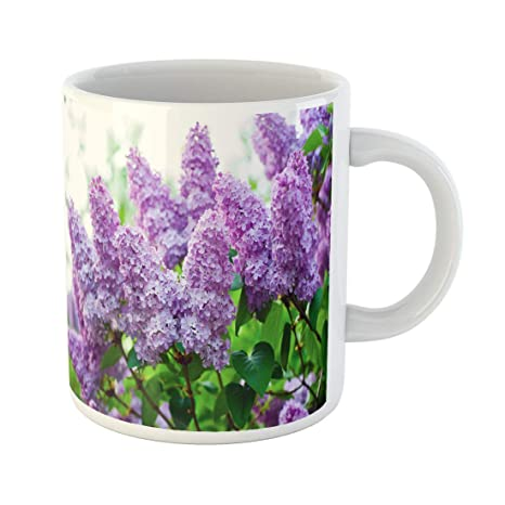 Amazon.com: Semtomn - Taza de café divertida, colorida ...