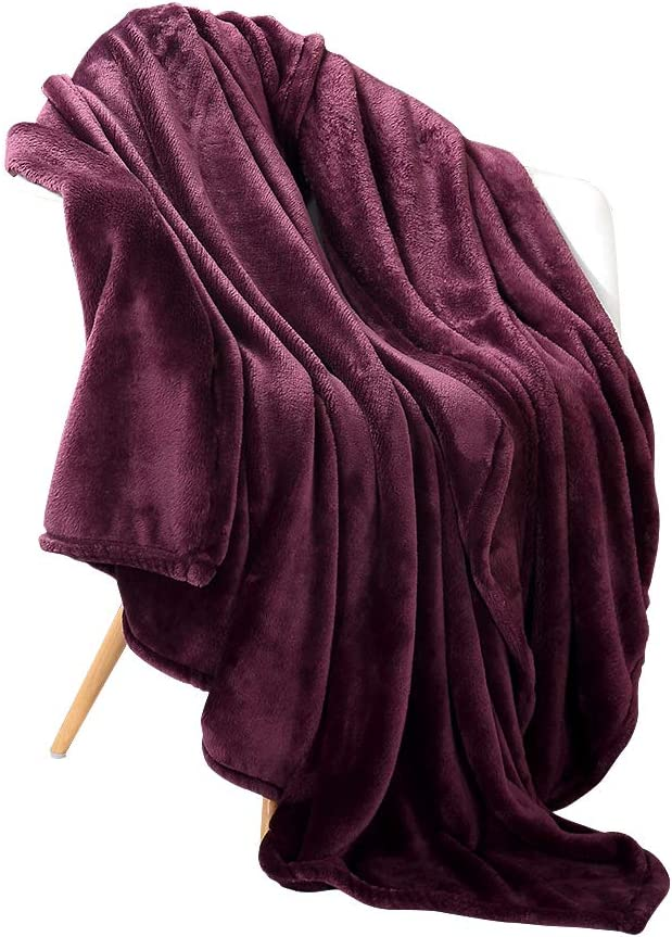 "Panku Flannel Fleece Blanket Soft Throw Blanket Super Warm Lightweight Blanket-Purple, Twin(66""x92"")"