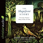 The Magnificent Story: Uncovering a Gospel of Beauty, Goodness, and Truth   James Bryan Smith