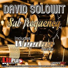 David Solowit Sub Frecuency