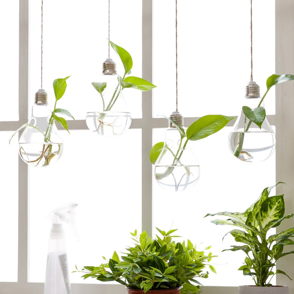 Playful Yet Afforable Hanging Flower Plant Glass Vase To Refresh Your House