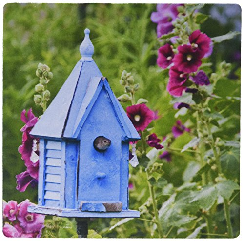 Blue Nest Box Hollyhocks. Marion, Illinois USA. Mouse Pad, 8