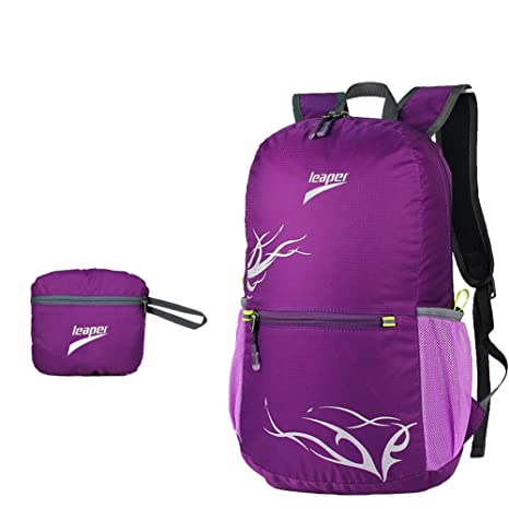 d066ce42596f Leaper Outdoor Nylon Ultra-light 20L Folding Backpack Travel Daypack for Hiking  Camping Climbing (purple)  Amazon.ca  Sports   Outdoors