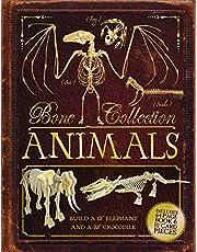 Bone Collection: Animals