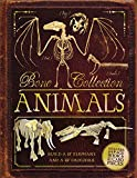 img - for Bone Collection: Animals book / textbook / text book