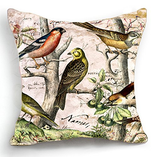 Loool 18 X 18 Inch Cotton Linen Retro Vintage Birds Home Decor Pillowcase Sofa Decorative Throw Pillow Case Cushion Cover (Pillows Banquette)