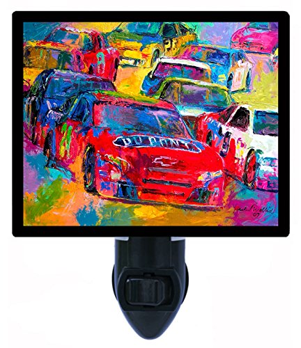 Jeff Gordon Stocking (Night Light - Jeff Gordon - NASCAR - Auto Racing - 24)