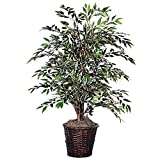 Vickerman TBU1340 Variegated Smilax Bush, 4', Green/White