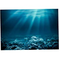 Amazon Best Sellers Best Aquarium Décor Backgrounds