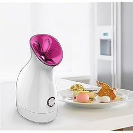 FLYMEI Nano Ionic Facial Steamer