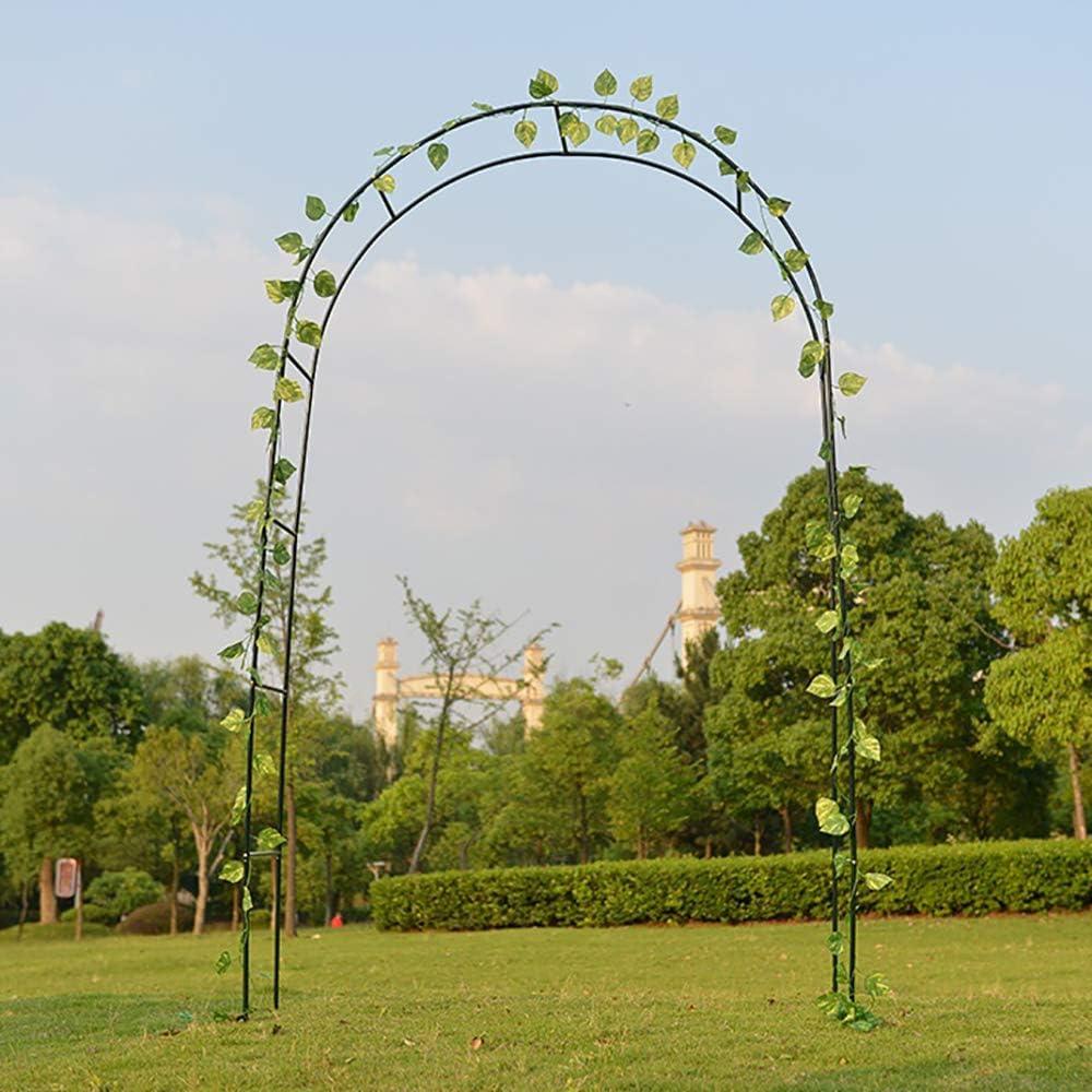 Raymonj Traliccio Decorativo da Giardino in Ferro ad Arco pergolato Tubolare in Ferro pergolato per Piante rampicanti