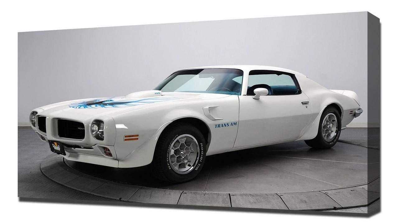 Amazon Com Lilarama Usa 1973 Pontiac Firebird Trans Am V1
