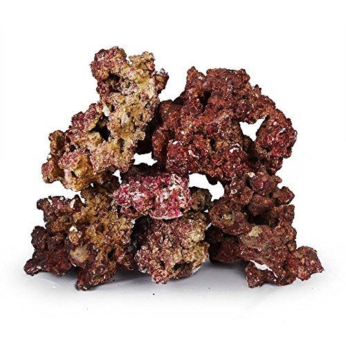 Live Saltwater - Real Reef Premium Live Rock For Saltwater Aquariums (20 LB) Mixed Sizes