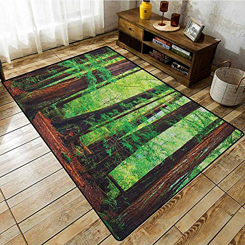 Living Room Rug,Woodland,Redwood Trees Northwest Rain Forest Tropical Scenic Wild Nature Lush Branch,Large Area mat Green Redwood