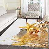 Seashells Area Silky Smooth Rugs Shells and Starfish Reflection Water Golden Color Spa Clear Beach Theme Floor Mat Pattern 3'x5' Earth Yellow Cream