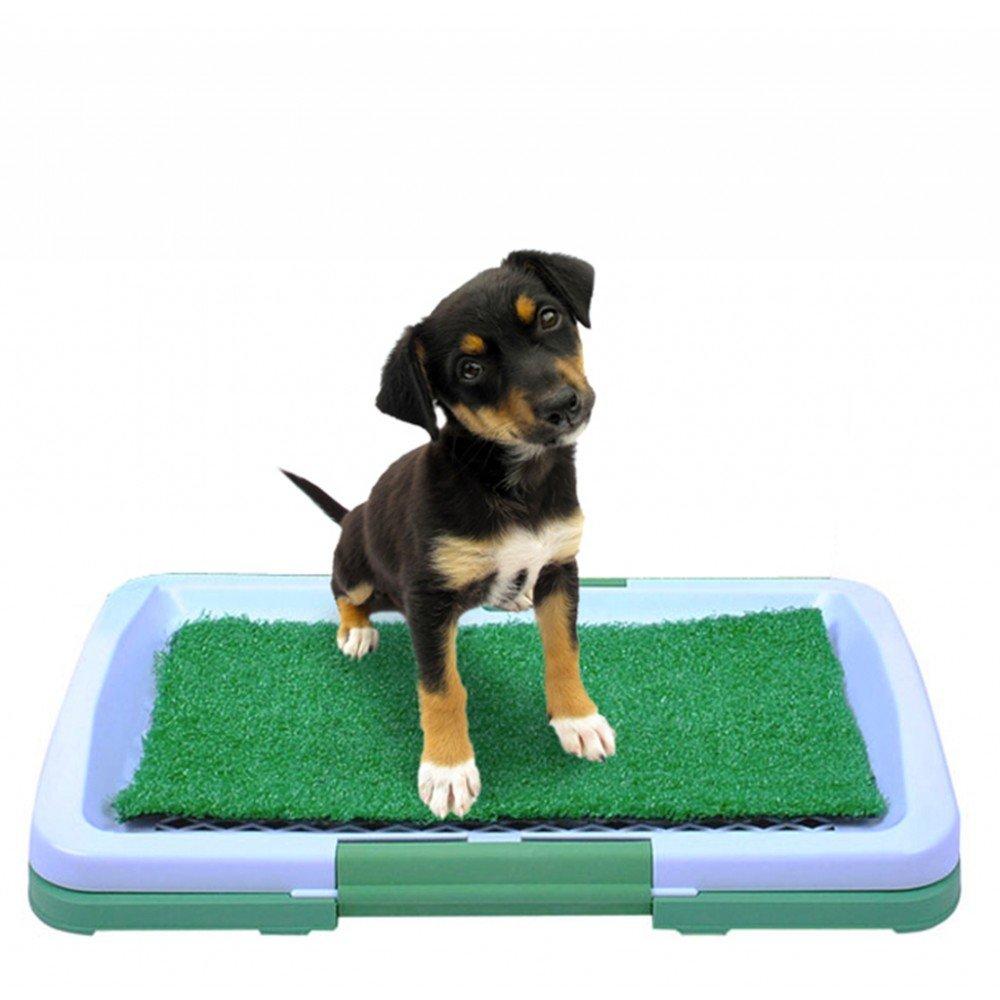 Cachorro Para Inodoro Perros Cachorros WC Perros Mascotas Matte Cachorros hundeab goteo nuevo # 922 Iso Trade