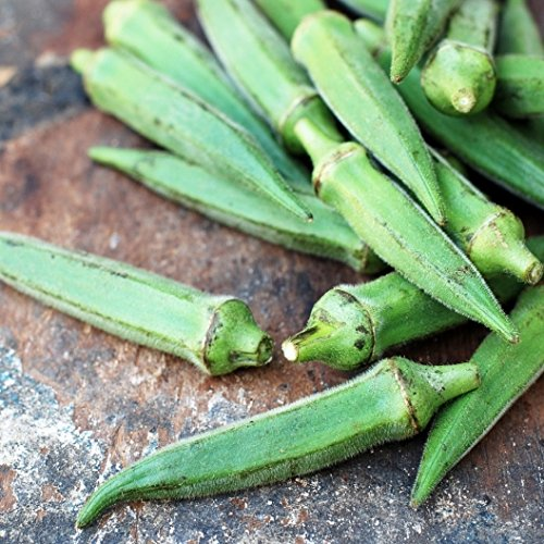 Dry Melon Wine (David's Garden Seeds Okra Emerald EB112DC (Green) 100 Heirloom Seeds)