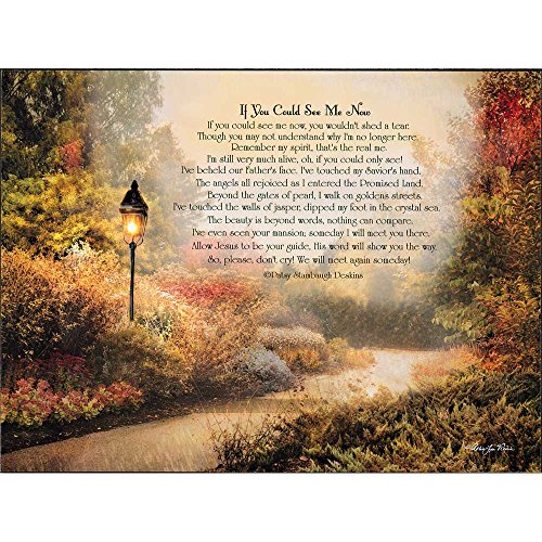 If You Could See Me Now Path 15 x 11 Inch Wood Wall Hanging Plock Plaque