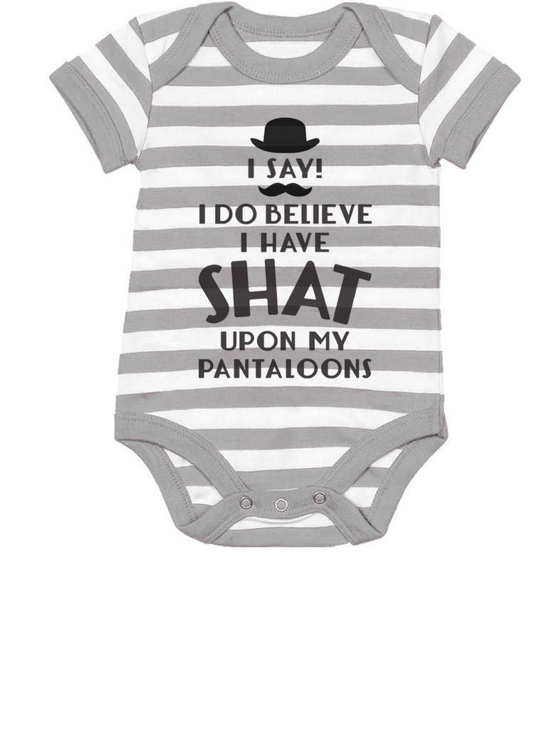 Tstars I Do Believe I Have Shat Upon My Pantaloons Funny Cute Baby Bodysuit 6M Gray/White